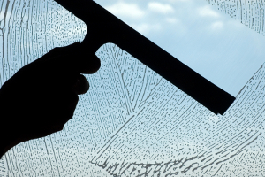 Logandale window cleaning services