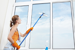 Laughlin window washing services
