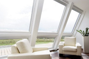 Whitney Window Cleaning Company